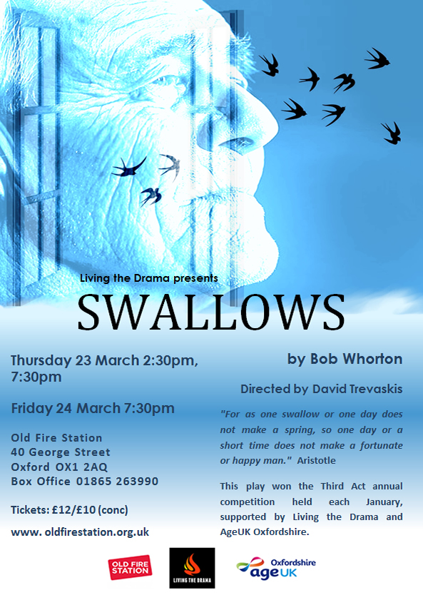 Swallows Poster